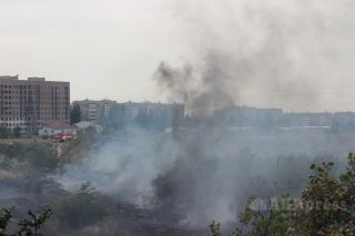 Fire engulfs dry grass and trees in Bishkek's Botanic Garden